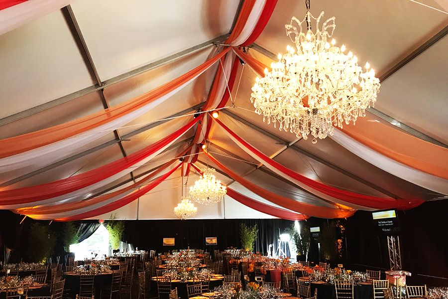 Ceilingdraping8